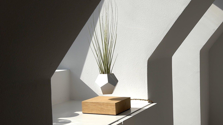 Levitating Plant Pot - I Buy Drunk