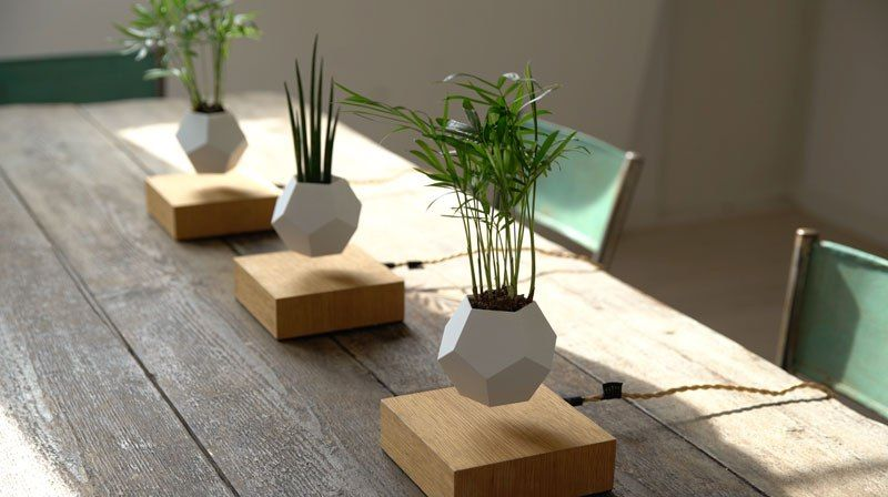 These Floating Pots Let Your House Plants Levitate and Spin | Cheap diy  home decor, Diy home decor projects, Unique home decor