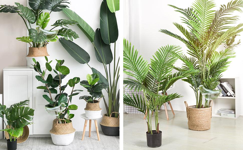 plant watering globe for indoor