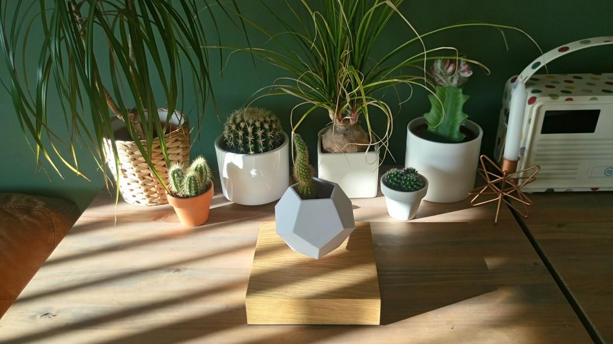 LYFE : The Levitating Plant Pot - The Design Sheppard