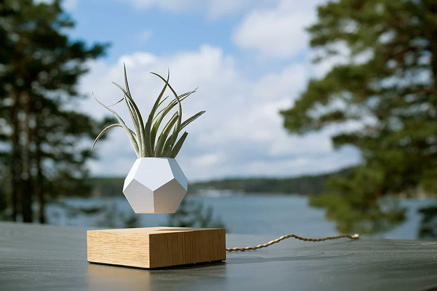 LYFE Levitating Plant Pot Reviews, Coupons, and Deals